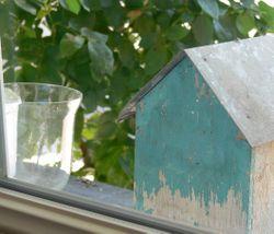 Le 33 bird house