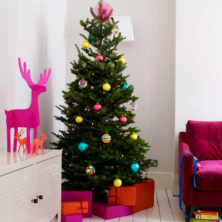 Fuchsia Xmas via House to Home