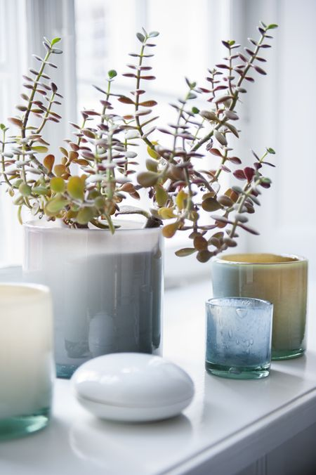 Scented candles and other treasures