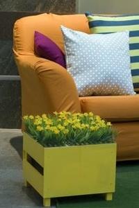 Orange_sofa